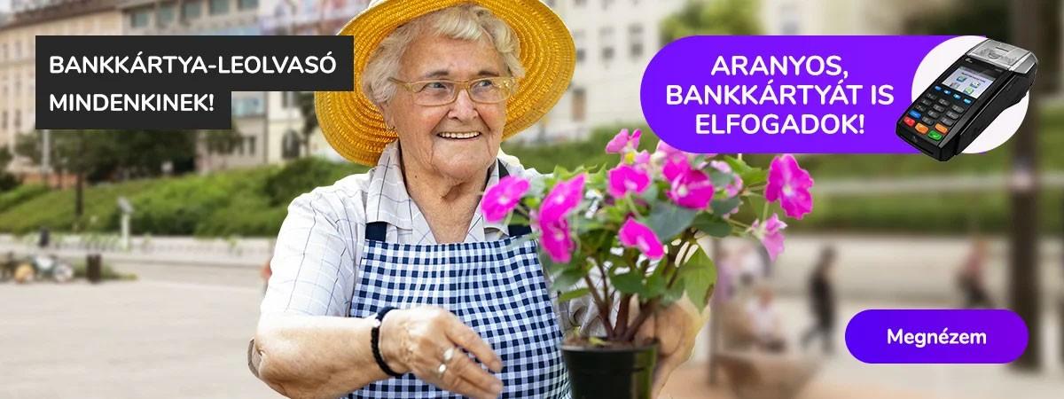 https://aucash.hu/57-bankkartya-terminalok